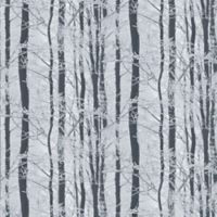 Imagine Frosted Wood Wallpaper in Silver