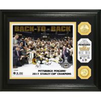 NHL Pittsburgh Penguins Stanley Cup 2017 Championship Celebration Banner and Bronze Coin Photo Mint