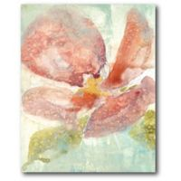 Courtside Market Veiled Poppy 16-Inch x 20-Inch Canvas Wall Art