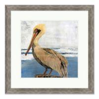 """Pelican Portrait 2"" 28-Inch x 28-Inch Print Wall Art"