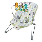 Fisher-Price® Arrow 17 Baby Bouncer