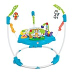 Fisher-Price® Musical Friends Jumperoo®