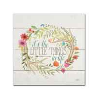 Janelle Penner Rustic Bloom II 14-Inch x 14-Inch Canvas Wall Art