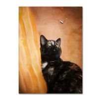 Kitten and Butterfly 14-Inch x 19-Inch Canvas Wall Art