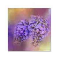 Jai Johnson Enticing Wisteria 14-Inch Square Canvas Wall Art