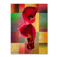 Mark Ashkenazi BBB 2 18-Inch x 24-Inch Canvas Wall Art