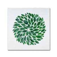 Tropic Star 14-Inch Square Canvas Wall Art