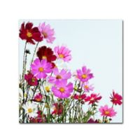 The Macneil Studio Cosmos 14-Inch Square Canvas Wall Art