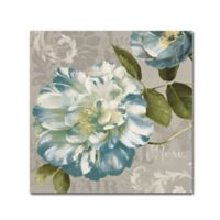 Lisa Audit Spring Flair II 14-Inch Square Canvas Wall Art