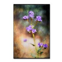 LightBox Journal Desert Flower 2 12-Inch x 19-Inch Canvas Wall Art