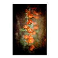LightBox Journal Desert Flower 5 12-Inch x 19-Inch Canvas Wall Art