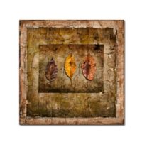 LightBoxJournal Autumn Leaves I 14-Inch Square Canvas Wall Art