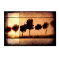 LightBoxJournal Love of Trees I 12-Inch x 19-Inch Canvas Wall Art