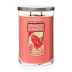 Yankee Candle® Housewarmer® Strawberry Lemon Ice Large 2-Wick Tumbler Candle