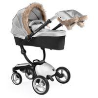 Mima® Xari Winter Accessory Pack in Argento