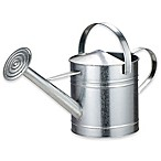 Arcadia Garden Products 2 Gallon Watering Can in Chrome