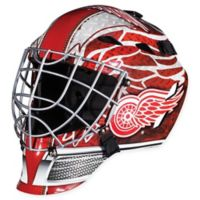 NHL Detroit Red Wings GFM 1500 Youth Street Hockey Face Mask