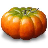 National Tree Company® 15-Inch Pumpkin Décor