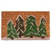 Home & More Winter Wonderland 24-Inch x 36-Inch Door Mat