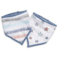 aden® by aden + anais® 2-Pack Hit the Road Multicolored Bandana Bibs