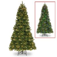 National Tree Company® 9-Foot PowerConnect Newberry Slim Christmas Tree with Dual Color Lights