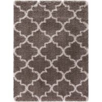 Ocean Marrakech 3-Foot 3-Inch x 4-Foot 7-Inch Shag Accent Rug in Light Brown
