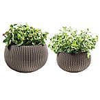 Keter® Cozies Knit 2-Piece Round Resin Indoor/Outdoor Planter Set in Harvest Brown (Set of 2)