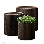 Keter® Round 3-Piece Indoor/Outdoor Planter Set in Brown