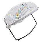 Fisher-Price® Rock 'n Play™ Sleeper in City Pebble