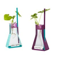 Educational Insights® Nancy B's Science Club™ Way To Grow Hydroponics Kit and Gardening Diary