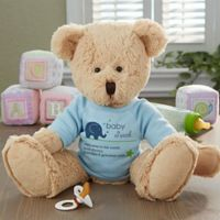 New Arrival Baby Teddy Bear in Blue