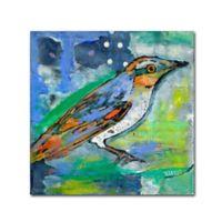 Magic Bird 18-Inch Square Canvas Wall Art