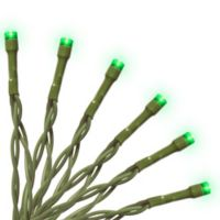 National Tree Company 35-Bulb LED String Light in Green