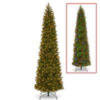 National Tree Company® 12-Foot Downswept Douglas Fir Pre-Lit Christmas Tree with 850 Lights