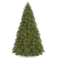 National Tree Company 12-Foot Pre-Lit Jersey Fraser Fir Christmas Tree with Clear Lights