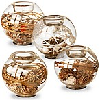 National Tree Company Pine Cone Glass Candleholder in Brown (Set of 4)