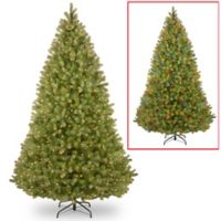 National Tree Co. 9-Foot PowerConnect™ Bayberry® Spruce Pre-Lit Christmas Tree
