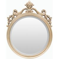 Surya Bristow 19.5-Inch x 25-Inch Wall Mirror in Champagne