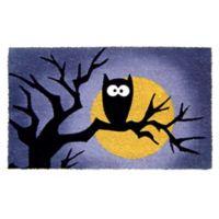 Nature by Geo Crafts Owl Moon 18-Inch x 30-Inch Multicolor Door Mat