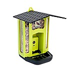 ExploreOne Bresser Bird Feeder Camera
