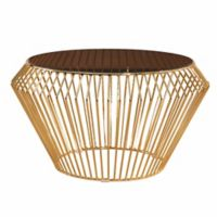Abbyson Living Emma Stainless Steel Coffee Table in Gold