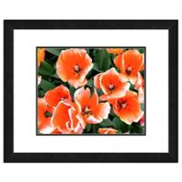 Large Orange Tulips 18-Inch x 22-Inch Framed Wall Art