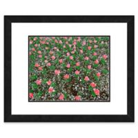 Frosted Pink Tulip Field 22-Inch x 26-Inch Framed Wall Art