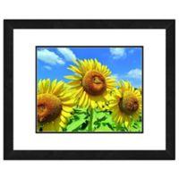 Sunflower Field 22-Inch x 26-Inch Framed Wall Art