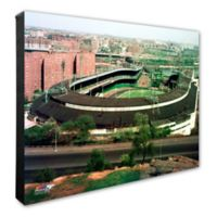 Polo Grounds 20-Inch x 24-Inch Photo Canvas Wall Art