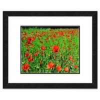 Red Poppies Flowers 22-Inch x 26-Inch Framed Wall Art
