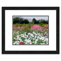White and Pink Poppies Flowers 22-Inch x 26-Inch Framed Wall Art