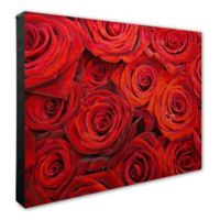 Red Roses 20-Inch x 24-Inch Canvas Wall Art
