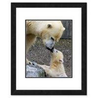 Polar Bears 22-Inch x 26-Inch Framed Wall Art