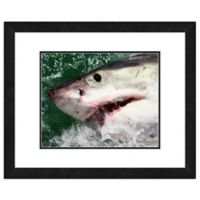 Great White Shark 18-Inch x 22-Inch Framed Canvas Wall Art